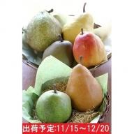 最高級 大玉西洋梨詰合せ約4kg 蔵王産