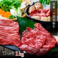 C3-05A 大人気!「おおいた和牛」おまかせすき焼きセット500g×2