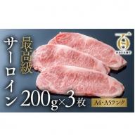 G3-01 おおいた和牛 サーロインステーキ(200g×3枚)