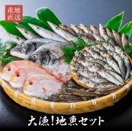D4-43 朝獲れ活〆!旬の地魚おまかせセット