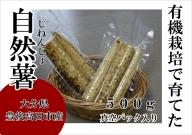 B-07 【先行予約】有機栽培で育てたこだわり自然薯(真空パック)