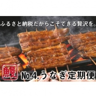 No.4【うなぎ好きのための定期便】大サイズ3尾6カ月(国産ニンニクの芽付き)Y-4