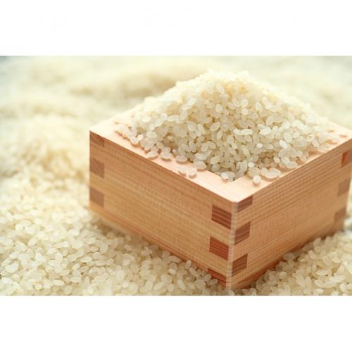 いくさかのお米 5kg