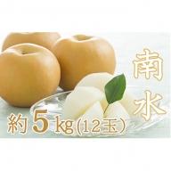 南水(日本梨)約5kg(12玉)
