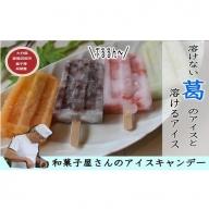 B-42 溶けないアイスキャンデー&溶けるアイスキャンデー(計4本)