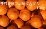 【X-9】  井村農園の足摺ぽんかん【10kg】