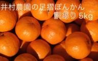 【AE-15】井村農園の足摺ぽんかん【家庭用5kg】