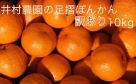 【N-14】井村農園の足摺ぽんかん【家庭用10kg】