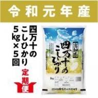 19-533.【5回定期便】【令和元年産 新米】四万十のこしひかり 5kg