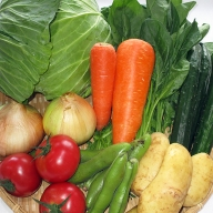 B−021.新鮮野菜の詰合せ