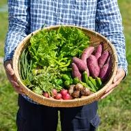 B−024.佐賀産季節の旬野菜(10種類)