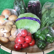 C−019.旬の新鮮野菜の詰合せ