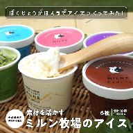 C−051.脊振高原牧場手作りアイスクリームセット