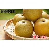 【馬場果樹園】梨「豊水」約5kg (10~14玉入)
