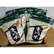 C−136.佐賀県産さがびより無洗米(2kg×4)