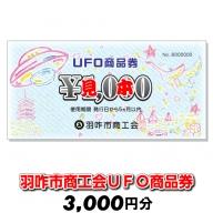 [G033] 羽咋市商工会UFO商品券(3,000円分)