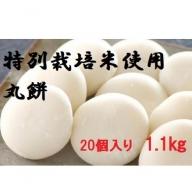 MS-22 大山のお米を使った丸餅(20個入り 1.1kg)