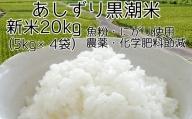 【Y-1】あしずり黒潮米20kg(5kg×4袋)
