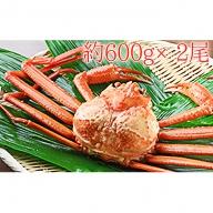 【おすすめ】新湊産紅ズワイガニ約600g×2尾【木や水産】