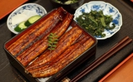 肉厚ふっくら香ばしい 特大うなぎ蒲焼き 200g 3尾セット(台湾産)Y-13