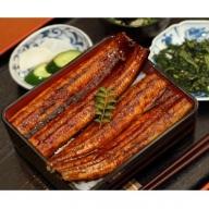 肉厚ふっくら香ばしい 特大うなぎ蒲焼き 200g 3尾セット Y-13