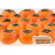SA0069 庄内柿