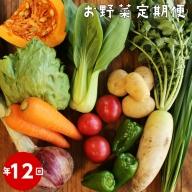 【年12回】高知から直送!旬の季節のお野菜定期便(7~10品)