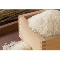 越前大野産 帰山さんの無洗米 コシヒカリ5kg 新米