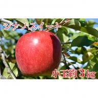 長野市産 シナノスイート 約3kg 小玉 (10-16玉)