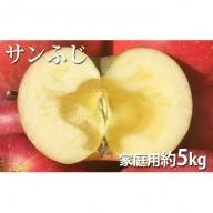 長野市産サンふじ 約5kg 家庭用 (16-22玉)