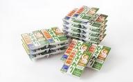 北海道十勝 やまぐち醗酵食品「ひきわり納豆」20個セット【F009】