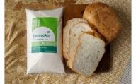 北海道十勝 前田農産パン用小麦粉「春よ恋」5kg【W006】