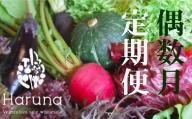 野菜【偶数月】定期便 香南市のお野菜詰め合わせコース L-13