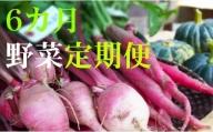 野菜【6カ月】定期便 香南市のお野菜詰め合わせコース L-15