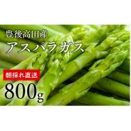 【先行予約】橋本さんのグリーンアスパラガス(800g)