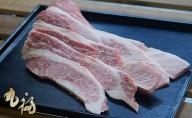 BG03◇淡路和牛焼肉 上カルビ 1kg
