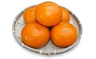 JK-01 大きくて甘い柿 「輝太郎(きたろう)」(3kg)