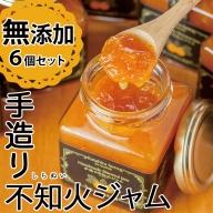 No.396 手造り不知火ジャム (200g×6本)無添加で安心の柑橘系ジャム!【片平観光農園】