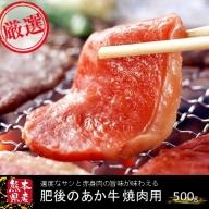 ○【熊本県産】GI認証取得 肥後のあか牛(焼肉用500g)