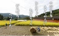 B10-114 佐賀県遺産認定「江里山の棚田」のお米(5kg)