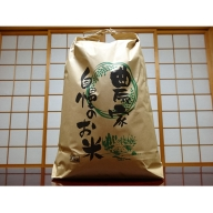 令和元年産福井県若狭町コシヒカリ(一等米)10kg(山心ファーム)