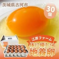 AG03_江原ファーム 体に優しい地養卵(30個)◆