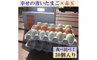 AG07_江原ファーム 地養卵&アローカナハーフセット(計30個)