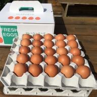 AG04_江原ファーム 体に優しい地養卵(50個)