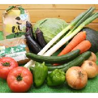 AU01_JA直売所厳選!地場産 旬の野菜・お米・みそ詰め合わせ