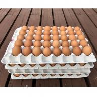 AG06_江原ファーム 体に優しい地養卵(160個)