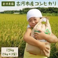 AN02_古河市産コシヒカリ15kg【倉持農園】