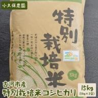 AS05_古河市産特別栽培米コシヒカリ15kg【小久保農園】
