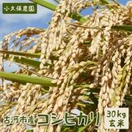 AS09_古河市産コシヒカリ30kg玄米【小久保農園】