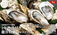 湧別サロマ湖産龍宮牡蠣3kg(2年カキ)